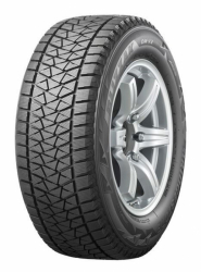 BRIDGESTONE-DM-V2